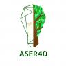 aser40